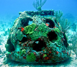 Кораллы из пепла умерших